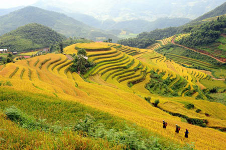 Sapa Adventure 4 Days 5 Nights